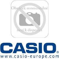 DT 5057 CF LASER SCANNER CASIO